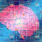 脳科学の歴史