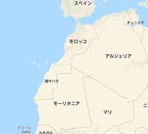 アフリカのタコ