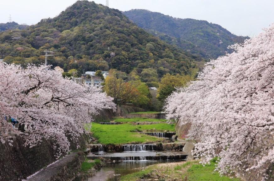 兵庫県芦屋市