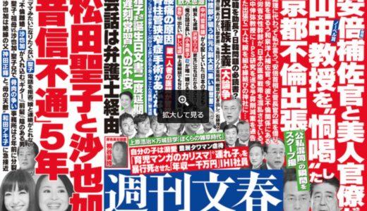 首相補佐官の京都不倫出張と江戸〜明治日本の日本人