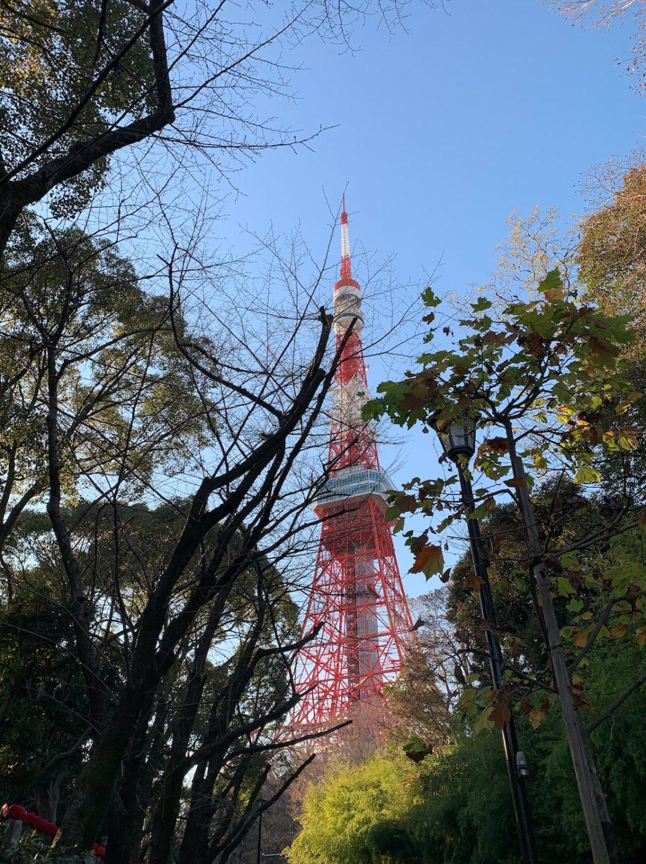 増上寺川から見た東京タワー
