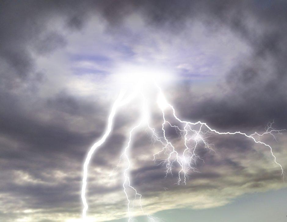 雷雨は植物の栄養?